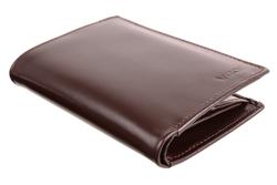 Biznesowy portfel męski ze skóry PPM5 kolor brązowy